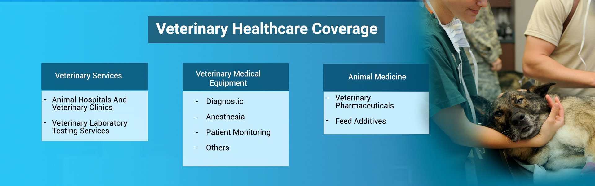Veterinary Healthcare Coverage