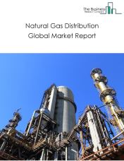 Natural Gas Distribution Global Market Report 2019