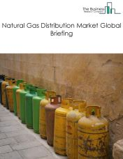 Natural Gas Distribution Market Global Briefing 2018