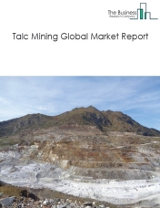 Talc Mining Global Market Report 2019