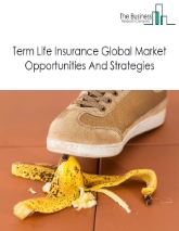 Term Life Insurance Global Market Report 2019