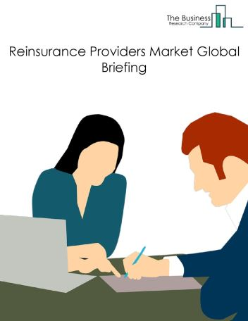 Reinsurance Providers Market Global Briefing 2018